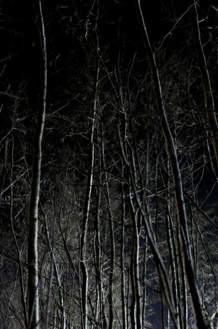 Nachtansicht P03-008