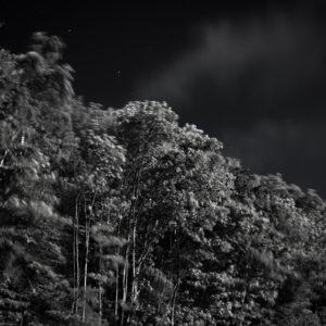 Nachtansicht P07-011