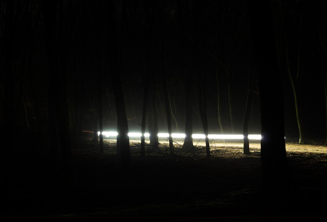 night dive 1, digital photograph by Sarah Janssen