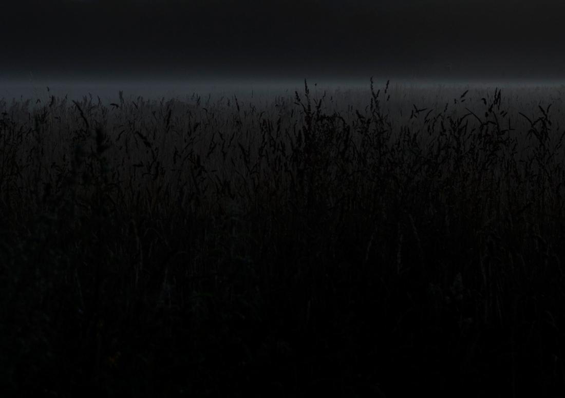 under a nameless moon X, digital photograph by Sarah Janssen